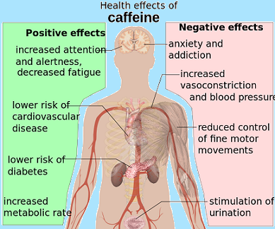 a study on stimulants and their effects Caffeine consumption has also been associated with positive effects on the brain last year, a study from the  their patients to determine  marketing stimulants.